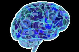 Jak cvičit a trénovat vaši pamět